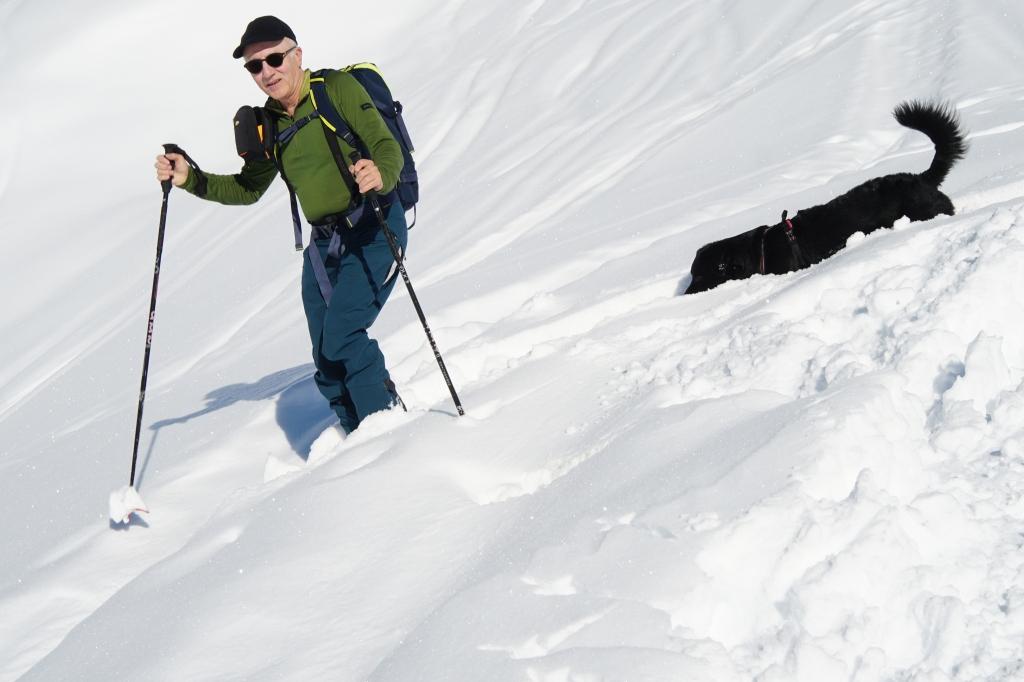 skier avec son chien